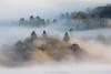 The Unveiling (Bob Bowman Photography) Tags: trees hills fog mist landscape california sonomacounty light morning