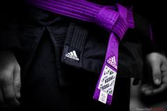 adidas belt copia (mestremur) Tags: jiu jitsu brazilian jiujitsu ju combat belt cinturon obi morado purple faixa adidas martial art artista marcial arte suave