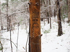 When its Cold Out Side.. (tripod_treker) Tags: woodcarvings winter ice winterscene carvings trails tree log pine snow