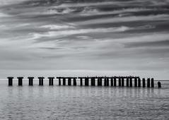 Abandoned shipping pier (Tim Ravenscroft) Tags: pier abandoned bocagrande florida hasselblad hasselbladx1d x1d monochrome blackandwhite blackwhite