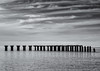 Abandoned shipping pier (Tim Ravenscroft) Tags: pier abandoned bocagrande florida hasselblad hasselbladx1d x1d monochrome blackandwhite blackwhite