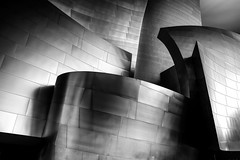 Disney Concert Hall (ADW44) Tags: disney losangeles disneyconcerthall california frankgehry architecture shapes lines bw monochrome leefilters leebigstopper canon5dmarkiii gitzo reallyrightstuff