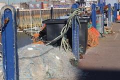 IMG_6888 (cindyincidentally) Tags: whitstable kent kentcoast britishbeach seaside seashore seasidetown