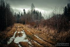 MDD_8817 (Dmitry Mahahurov) Tags: nikon d300 mahahurov tosno