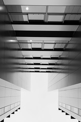 moderne et abstrait (Rudy Pilarski) Tags: nikon tamron d7100 2470 nb bw monochrome moderne modern urbain urban urbano verre fenêtre windows ville city france ladéfense line ligne lookup abstract abstrait architecture architectura geometry geometria forme form structure