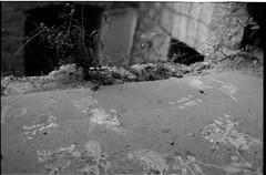 ամառ 2013։ (նորայր չիլինգարեան) Tags: canoscan9000fmarkii kodakcft mamiyaze2 mamiyasekore50mm17 աղջիկ արցախ ժապաւէն լուսանկարներ հետազօտութիւն շէնք շուշի ռեալականդպրոց
