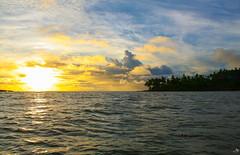 Coucher de soleil sur les îles (alain_did) Tags: guyanefrancaise kourou océan atlantique mer vagues horizon cocotiers amazonie amériquedusud sunset clouds ciel reflets sun goldenhour
