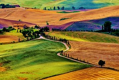 Tuscany Italy (now for sale on Getty Images) (Rex Montalban Photography) Tags: rexmontalbanphotography italy tuscany europe valdorcia