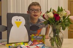 Valentine's Day Summary (aaronrhawkins) Tags: valentinesday box candy valentines rose flower penguin boy child joshua holiday vase aaronhawkins