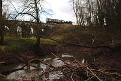 Severn Valley Railway at Borle Viaduct. (Keith Wilko) Tags: severnvalleyrailway svr steamtrain steamlocomotives sevenvalleyrailway severnvalley steam uksteamtrains britishsteamtrains ukpreservedrailways railway train steamintheuk 1501 loco1501 1501loco tankengine borleviaduct borle river svrviaducts trainbridge trees gwrtankengines borlebrook streams rivers brooks coppice woodland