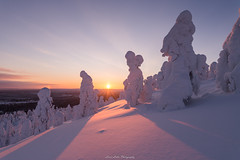 Evening. (laurilehtophotography) Tags: 2018 posio riisitunturi talvi suomi finland landscape nature ice snow cold winter trees nationalpark sunset sun sky nikon d610 sigma 20mm art amazing europe lapland