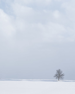 Snowline VI