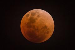 Super Blood Moon 2018 (BP Chua) Tags: moon superbloodmoon bloodmoon supermoon night nikon nikond750 600mm round circle singapore asia