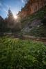 Good Morning Sunshine (Alex Savenok) Tags: morning sunrise cliffs shilat israel israelnature greenfields 1635 sky