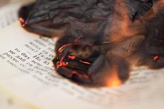 Fahrenheit 451 (adelina_tr) Tags: flame print macromondays burn paper books myfavouritenovelfiction fahrenheit451