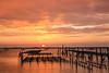 日落潟湖(Oyster fields sunset )。 (Charlie 李) Tags: 5d3 canon sunset oysterfields taiwan tainan cigu lagoon 潟湖 蚵架 台南 七股 日落 夕陽