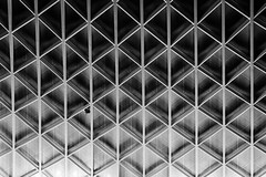 Prisoner, King's Cross Station, London (f/me) Tags: lessismore less atmosphere moody roof architecture lines geometry emotion baloon prison ceiling shapes bw blackandwhite monochrome monochromatic london kingscross