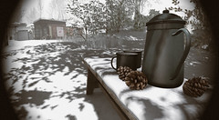 """""""Never too cold for a hot coco moment."""" (A Lone) Tags: second life secondlife sl virtual dark light shadow art firestorm gimp photography windlight photo sim 3d nature landscape scenery beauty romance serene winter winterscape snow bench pinecone thermos chocolat hotcoco coco cocoa"""