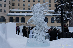 Eagle Ice (Roy Prasad) Tags: banff lakelouise lake ice prasad royprasad sculpture travel canada alberta fairmont sony a9 a7rm3 bird eagle