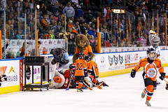 "Kansas City Mavericks vs. Cincinnati Cyclones, February 3, 2018, Silverstein Eye Centers Arena, Independence, Missouri.  Photo: © John Howe / Howe Creative Photography, all rights reserved 2018. • <a style=""font-size:0.8em;"" href=""http://www.flickr.com/photos/134016632@N02/26245173878/"" target=""_blank"">View on Flickr</a>"