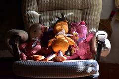 pater, mater et filii (Karen Scarlett Delgado) Tags: toy toys animal nikon d3400 mexico tepotzotlán light colors stuffedtoy teddy