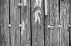 bn00057_34 (pontonoscar) Tags: asa50 id11stock nikonfa nikkor35mmf2ais panf50 sanmartíndelavega verano2013