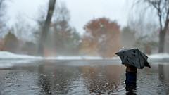 Rain stops play (012/365)