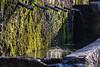 Spain - Malaga - Villanueva del Trabuco - Fuente los cien caños - Source of the River Guadalhorce (Marcial Bernabeu) Tags: marcial bernabeu bernabéu spain españa andalucia andalucía andalusia malaga málaga villanueva trabuco rio río river guadalhorce source fountain fuente cien 100 caños water agua