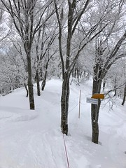 Entrance of Powder Snow (peaceful-jp-scenery (busy)) Tags: madarao powder snow ski resort 斑尾高原 スキー場 雪 飯山 長野 日本 iphone8