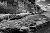 Inexorable (Fabrice Denis Photography) Tags: seascapephotography france noiretblanc bwphotography charentemaritime falaises coastalphotography monochromephotography sea nouvelleaquitaine blackandwhitephotographer ocean monochrome talmontsurgironde coastal oceanphotography blackandwhite seascapes seascapephotographer blackandwhitephotos seascapephotos blackandwhitephotography fr