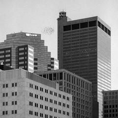 Columbus, Ohio (Explored) (Stephen A. Wolfe) Tags: 35mm swolfe2000 adobelightroom adobelightroomcc canoscanfs2710 columbus iso800 kodakhc110 nikonf3 ohio blackandwhite film fomopan400 httpstephenwolfephotography downtown architecture birds