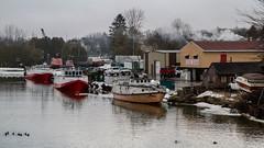 Commercial Fishing Fleet