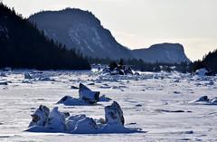L'hiver au Bic (jpdu12) Tags: jeanpierrebérubé jpdu12 nikon d5300 parcnationaldubic lebic bic glace fleuve stlaurent neige hiver ice