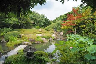 退蔵院  Taizo-in garden ..Kyoto