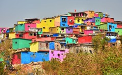 Inspired by Italy's Positano, Mumbai's Asalpha village has recently got a colourful makeover (Sougata2013) Tags: asalphavillage ghatkopar mumbai maharashtra india colours mumbailife