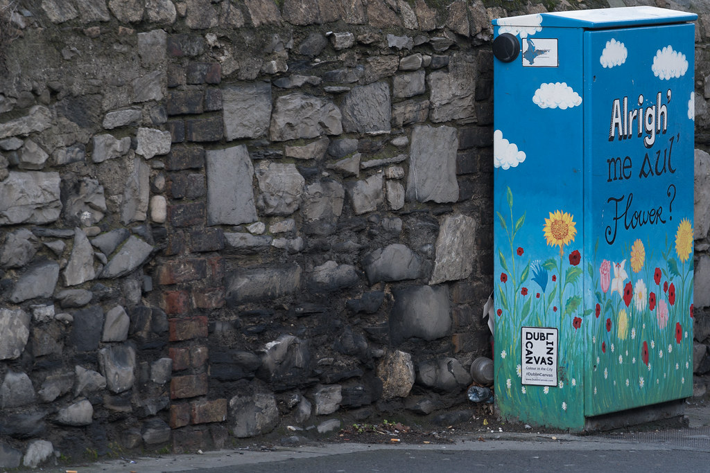 ALRIGHT ME AUL FLOWER BY ALISON O'GRADY [PAINT-A-BOX STREET ART AT RINGSEND BRIDGE IN DUBLIN]-135462