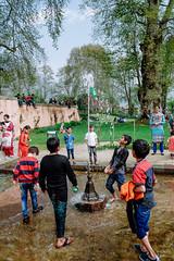 lehsrinagar_trip_day_8_63 (plynoi) Tags: heritagemughalgardennishat india kashmir mughalgarden nishatbagh srinagar travel
