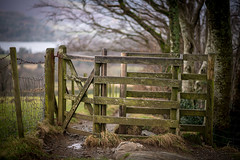 23rd January 2018 (Rob Sutherland) Tags: borrowdale watsonspark keswick castlerigg gate kissing fence path walk rural countryside country lakedistrict lakes north ldnp nationalpark worldheritage wet shabby distressed old