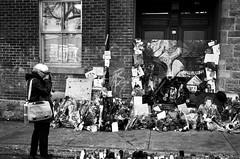 Leonard Cohen et Montréal, une histoire d'amour... (woltarise) Tags: montréal vallières rue quartier stlaurent petiteitalie portugal place hommage décès adresse maison leonardcohen musique artiste poète