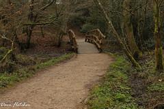 Footbridge Sheffield Park Uckfield. (Meon Valley Photos.) Tags: footbridge sheffield park uckfield national trust