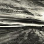 Tentsmuir Beach East coast_G5A4550 thumbnail