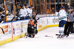"Kansas City Mavericks vs. Florida Everblades, February 18, 2018, Silverstein Eye Centers Arena, Independence, Missouri.  Photo: © John Howe / Howe Creative Photography, all rights reserved 2018 • <a style=""font-size:0.8em;"" href=""http://www.flickr.com/photos/134016632@N02/39491136945/"" target=""_blank"">View on Flickr</a>"
