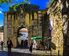 Castelo & Castanhas (44/365) (Walimai.photo) Tags: castelo castle castillo castaña castanha lisboa lisbon lx5 lumix panasonic portugal color colour candid robada street calle