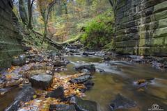 Big stones and Fallen Trees. (CamraMan.) Tags: canonbie scotland dumfriesandgalloway bridge water river autumn rocks byerburn canon1740mmlusm canon6d longexposure ©davidliddle ©camraman