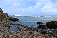 Piha, Auckland, NZ (christineNZ2017) Tags: piha auckland newzealand westauckland waitakere camelrock taitomo island thegap