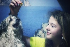 Day13 (a_salnikova) Tags: 365project 365 day13 chinesecristatedog family oldlens manualfocuce manualfocus