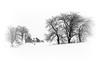 La petite maison dans la tempête (Nicole Barge) Tags: snow snowstorm tempêtedeneige québec stnarcissedebeaurivage landscape habitatrural 2018 noiretblanc
