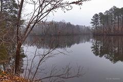 Lake Maury (r.w.dawson) Tags: lakemaury newportnews virginia va usa causeymillpark fog foggy lake landscape