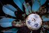 Tired old sunflower (Paul Henman) Tags: toronto torontophotowalks paulhenman topw2018rs ontario maintowoodbinephotowalk paulhenmanphotographyca httppaulhenmanphotographyca 2018 topw rusty metalflower