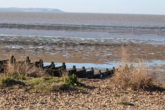 IMG_6929 (cindyincidentally) Tags: whitstable kent kentcoast britishbeach seaside seashore seasidetown